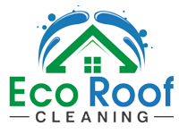 Roof cleaning london